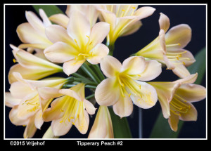 TipperaryPi2